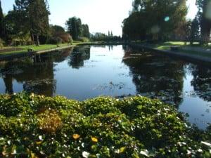 ale da piccolo autunno parco sigurtà 544