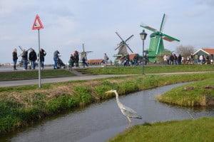 Parco dei mulini a vento nelle campagne fuori Amsterdam