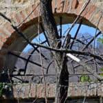 Oltre la porta. Colline di Gavignano (BO)