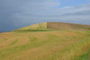 Alla scoperta delle Crete Senesi: colline coltivate a frumento e cereali Tempo : 1/250 sec. Diaframma : F/8 Iso : 100 Distanza focale : 38 mm.
