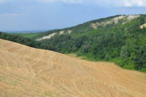 Colline, dopo la trebbiatura del grano. Tempo : 1/250 sec. Diaframma : F/8 Iso : 110 Distanza focale : 32  mm.