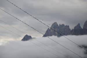 Gruppo di corvi, stazionano sui cavi della teleferica dolomitica. Tempo : 1/160 sec. Diaframma : F/6,3 Iso : 200 Distanza focale : 105  mm.