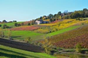 Veduta autunnale delle colline di Castelvetro (MO) Tempo: 1/250 sec. Diaframma: F/8 Iso: 180 Distanza focale: 58mm. Grazie a Giulia, per averci indicato questi bellissimi paesaggi !