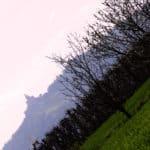 521b42948a427-SilviaBenni_03